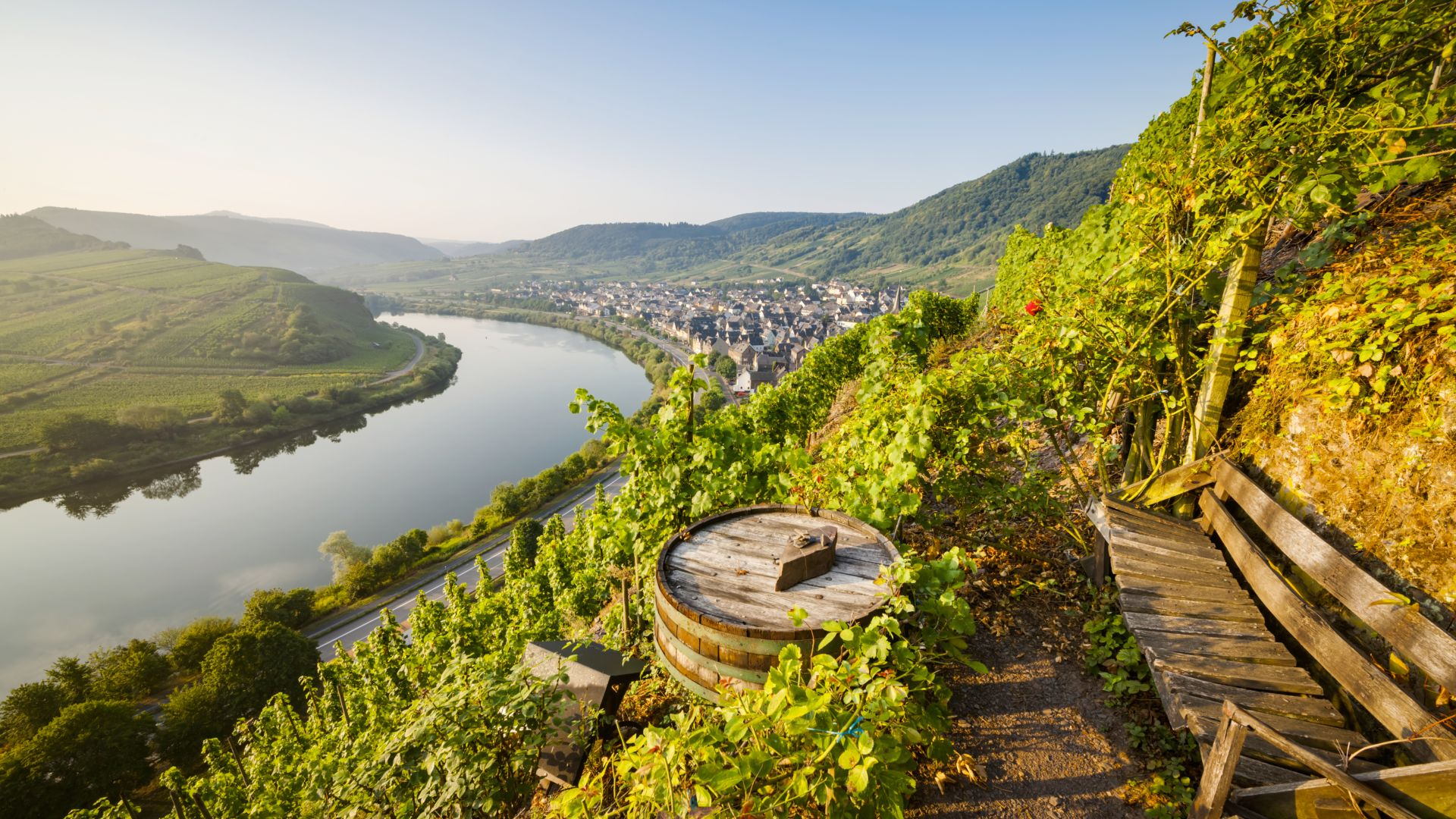 Bremm:The Calmont, Europe's steepest vineyard, view over the Moselle at dusk